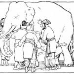 Blind Men & the Elephant